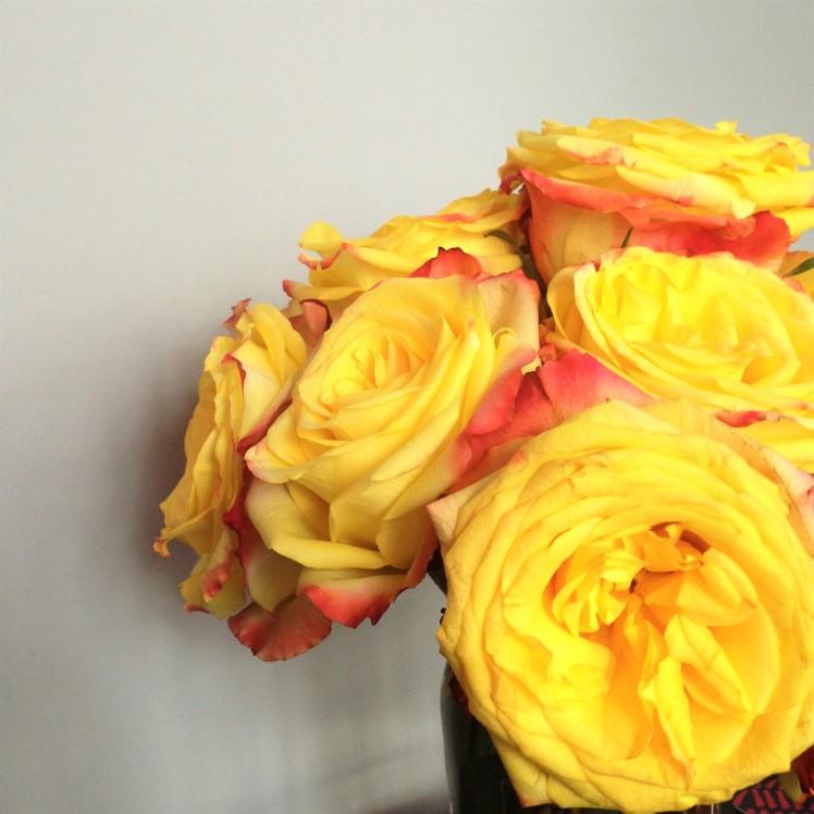 yellow_flower_mjg